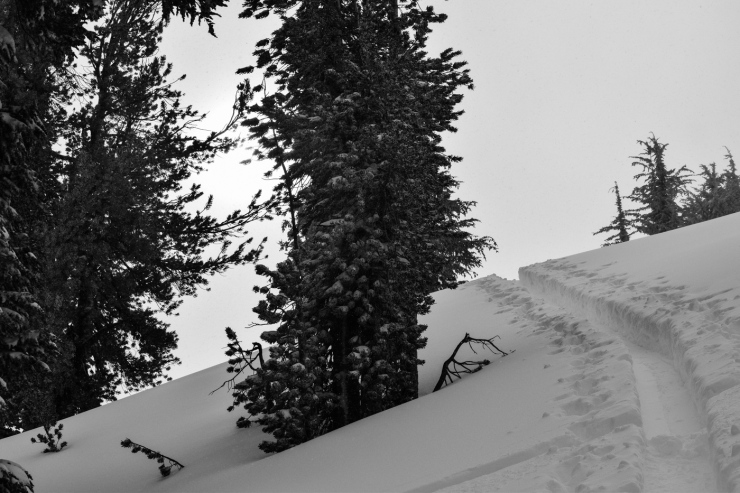inclinepeakpowder-10