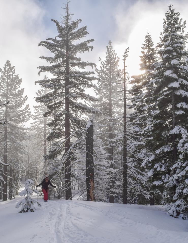 Silver Peak with Sara BC-2