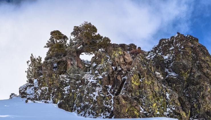 Silver Peak with Sara BC-4